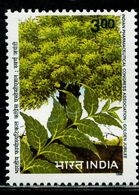 AZ3696 India 1998 Plant Leaves 1V MNH - Plants