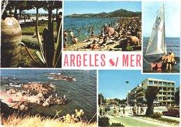 FR66 ARGELES SUR MER LE RACOU - CPM 10 * 15 - Multivues - Belle - France
