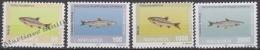 Macedonia 1993 Yvert 6-9, Fauna, Fish - MNH - Macedonië