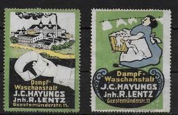 Deutsches Reich Dampf Waschanstalt Hayungs Lentz Bremen Vignet Werbemarke Cinderella Advertisement Label - Fantasie Vignetten