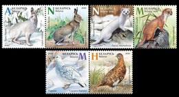 Belarus 2020 - Seasonal Variations. Mountain Hare Bird Vogel Dieren Moorschneehuhn Weißrussland/Wit-Rusland/Bielorussia - Belarus