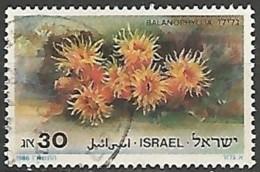 ISRAËL N° 970 OBLITERE Sans Tabs - Israel