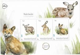 Nederlandse Zoogdieren - Hert, Haas En Vos - Paesi Bassi