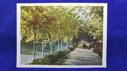 Tashkent Gardens On The Embankment Of The River Ankhor Uzbekistan - Oezbekistan