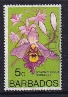 Barbados: 1974/77   Orchids  SG489    5c    Used - Barbados (1966-...)