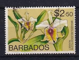 Barbados: 1974/77   Orchids  SG498    $2.50    Used - Barbados (1966-...)