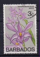Barbados: 1975/79   Orchids  SG512    3c    Used - Barbados (1966-...)