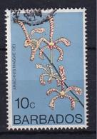 Barbados: 1975/79   Orchids  SG515    10c    Used - Barbados (1966-...)