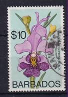 Barbados: 1975/79   Orchids  SG524    $10    Used - Barbados (1966-...)