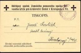1915 Rot Kreuz Drucksachen Karte Nach Kralupech. - Tchécoslovaquie