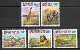 HAUTE VOLTA   -  Aéros. 1973. Y&T N° 140 à 144 Oblitérés..  Girafe / éléphant / Lion /  Crocodile.  Série Complète. - Alto Volta (1958-1984)