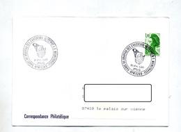 Lettre Cachet BPM 520 B Drapeau Chasseurs Neustadt - Marcophilie (Lettres)