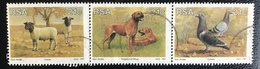 RSA  - Republic Of South Africa - (o) Used - Ref 13 - 1991 - Het Fokken Van Dieren - África Del Sur (1961-...)