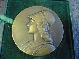 MEDAILLE BRONZE 55 Mm Pour 68 Gr. - Signée F. MICHELET Offert Par Le Comte D'Andigné (Anjou) Allégorie Femme Guerrière - Firma's
