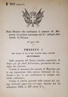 Decreto Regno Italia - Costituzione Comune Di Magnano In Sezione Di Novara 1884 - Old Paper