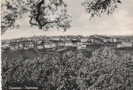 Cartolina - Postcard /  Viaggiata -  Sent /  Catanzaro, Panorama. ( Gran Formato ) Anni 50° - Catanzaro