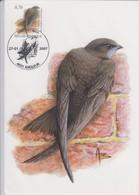 België, Maximumkaarten, Nr. 3610 Gierzwaluw 27-01-2007 - 2001-2010