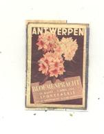 Façade De Boîte D'allumettes  - Antwerpen / Anvers - Bloemenpracht - Exposition De Fleurs 1956 (RMT) - Matchbox Labels