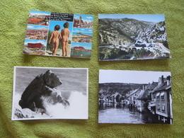 Lot D'une Cinquantaine De Cartes Postales Semi-modernes ,dites CARTES-PHOTO ,et AUTRES - Cartes Postales