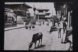 NEPAL - Carte Postale - Kathmandou - Un Aspect Du Quartier Des Temples - L 61570 - Nepal