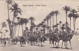 AFRIQUE. LYBIE. TRIPOLI ITALIANA. STRADA BANZUR. . TEXTE MILITARIA. ANNEE 1912 - Libye
