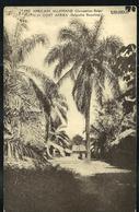 Carte Illustrée  N° 12. Vue: 2. UDJIDJI.  (obl. 10/05/1918) - Ganzsachen