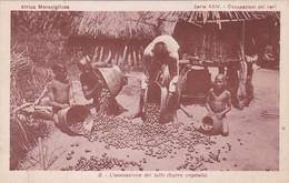 L'ESSICAZIONE DEL LULLO, BURRO VEGETALE. AFRICA MERAVIGLIOSA. CONGO CARTE POSTALE CIRCA 1900's NON CIRCULEE -LILHU - French Congo - Other