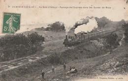 La BAULE. - Au Bois D'Amour - Passage De L'Express Dans Les Dunes De Mazy. Attelage.Superbe Cliché - Le Pouliguen