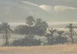 LIBYE  SAHARA  OUAOU-EN-NAMOUS - Libye