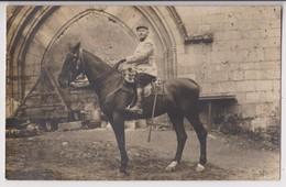 CARTE PHOTO MILITAIRE : SUPERBE CHEVAL - SOUVENIR DE LA CAMPAGNE DE ROCROI - BATAILLE DES ARDENNES ? -z 2 SCANS Z- - Paarden
