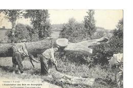 CACHET  LE FAYS  NAILLY      EXPLOITATION DES BOIS EN BOURGOGNE   OUVRIERS EN ACTION  G.P  DEPT 89 - Autres Communes