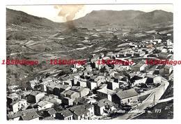 S. PIETRO AVELLANA - PANORAMA   F/GRANDE VIAGGIATA 1964 - Campobasso