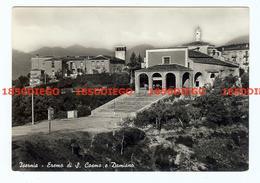 ISERNIA - ERAMO DI S. COSMO E DAMIANO   F/GRANDE VIAGGIATA 1956 - Isernia