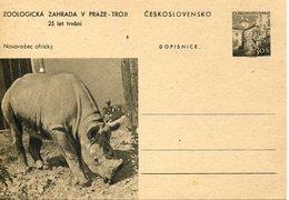 54919 Ceskoslovensko, Stationery Card 30h. 25 Year Zoo Of Praha, Showing Rhinoceros,nashorn,rhinocéros - Rhinocéros