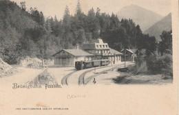 Suisse - MEIRINGEN - Brünigbahn Passhöhe - BE Berne