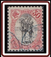 Côte Française Des Somalis 1894-1903 - N° 46 (YT) N° 45 (AM) Oblitéré. - Costa Francesa De Somalia (1894-1967)