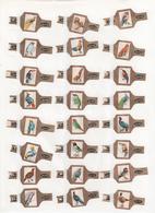Sigarenbanden Alto Serie Vogels 48 St - Bagues De Cigares