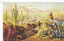 Hohokam Indians, Gila River Valley , Coolidge , Arizona , 50-60s - Native Americans