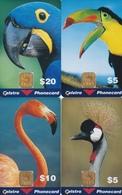 Birds Set Of 4 In Blister - Australien