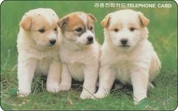S-Korea Phonecard  Autelca Nice 3 Dogs - Korea (Süd)