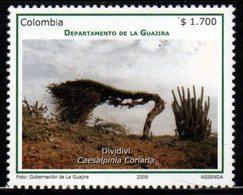 A544F-KOLUMBIEN - MNH - 2009 - GUAJIRA DEPARTMENT- DIVIDIVI TREE - Colombie
