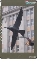 Japan Card Bird Vogel - Sonstige