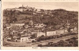241/FP/20 - MONDOVI' (CUNEO) - Panorama - Cuneo
