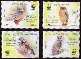 2011Iran3251-3254Owls - Owls