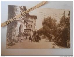AFRIQUE / ALGERIE / ALGER / Hotel St Georges (terrasse Animée)1921 - Algiers