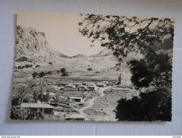 BOU-CAID (AFRIQUE /ALGERIE / BOUCAID / WILAYA DE TISSEMSILT ) Photo Véritable 1960 - Other Cities