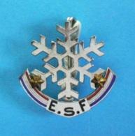 1 BROCHE  //   ** E.S.F / ÉCOLE DU SKI FRANÇAIS / 2 ETOILES ** . (Montereau Paris) - Wintersport