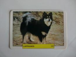 Dog/Chien Cão Lapphunds Portugal Portuguese Pocket Calendar 1993 - Calendars