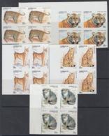 F-EX15600 AZERBAIJAN RUSSIA RUSIA MNH 1994 IMPERF PROOF FELINE LION TIGER CATS - Azerbaidjan