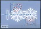 Slovenia. Scott # 1050a-b,  MNH S/sheet. Year Of Crystallography. Joint Issue With Belgium 2014 - Gemeinschaftsausgaben